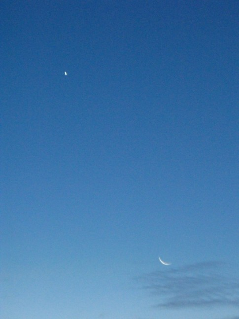 Venus and the moon. We enjoyed this planet every night.