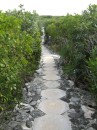 The path from Exuma Park Headquarters down to the beach