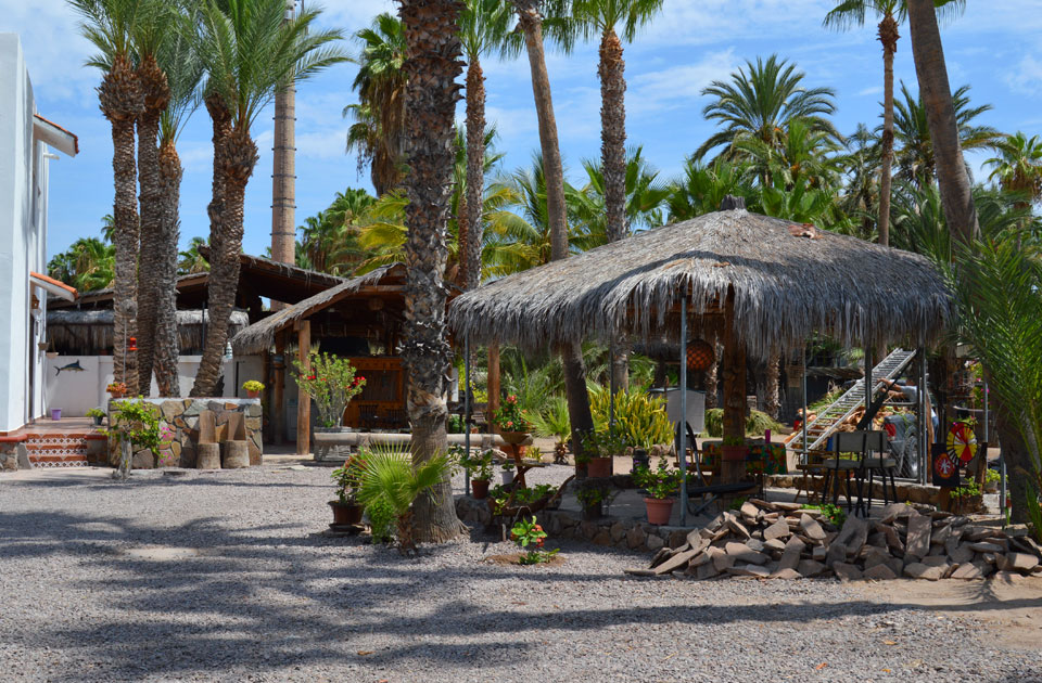 Palapa and palms hotel in Loreto.