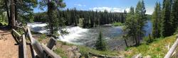 Panoramic view of the Cave Falls cascades on the Fall River, southwest Yellowstone. The Fall River flows into the Henry
