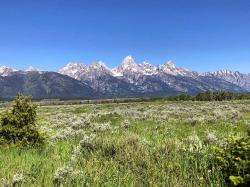 One of the many lovely views of the Grand Tetons... this one from our friend