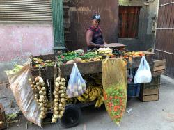 Cuban produce carts and small tiendas carried mostly garlic, onions, plantains, cucumbers, potatoes, peppers, cassava root, sweet potato, cabbage, papaya, pineapple, mango, and tiny bananas.