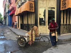 We also saw lots of bicycle vendors with braided ropes of garlic and onions throughout our Cuban travels.