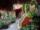 Lovely hotel courtyard in Sayulita, rooms were about $50/night, if we go again we