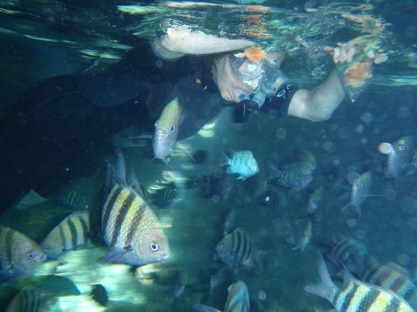 Here I am feeding the fish inside the grotto. We brought ziplock bags of bread crumbs but I