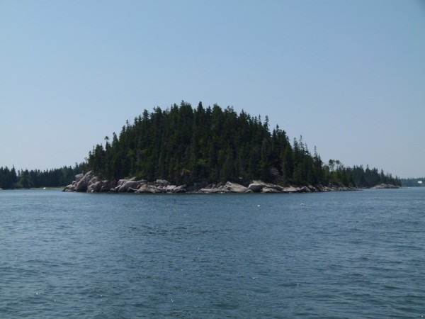 Our first anchorage in Maine was beautiful and far away from any cities.  It was mostly pine trees and rocks.