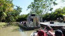 After we left Key West we stopped in the Everglades and took an airboat ride to see alligators. It was pretty cool but you don