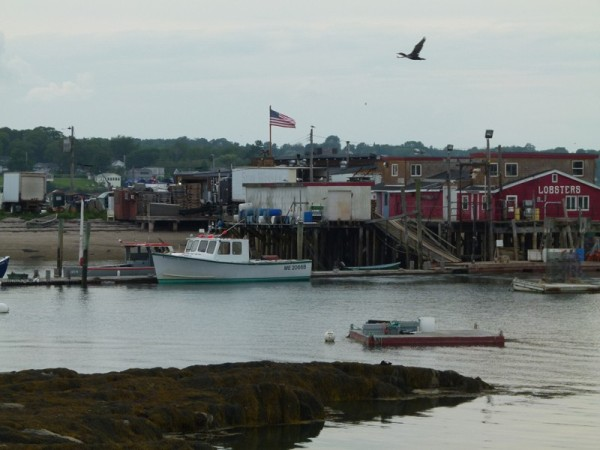 We anchored close enough to this lobster restaurant so we could go there for dinner.  It is in Harpswell Harbor
