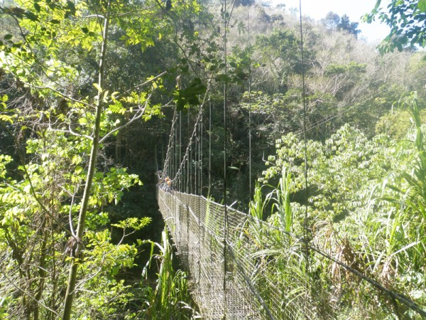 The next day we drove deep into the country and took a zipline and rappelling adventure tour.  First you have to cross this suspension bridge.
