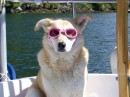 Wearing her doggles, & not liking it one bit!
