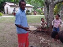 Little guy picking his own kava root in the background