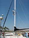 Our steaming light bulb burt out on the mast.... so up the mast Foster goes in the bosuns chair.