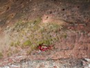 A bright red crab scurrying around the rocks. Los Gatos