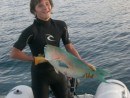 Josh and Foster are good spear fisherman... Parrotfish is delicious.