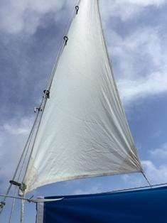 Attached to topping lift with spare halyard
