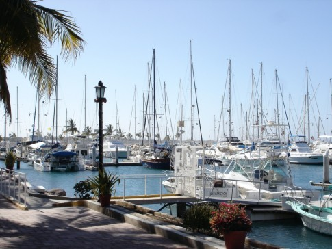 Boats in Marina Palmira.
