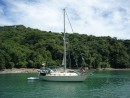 Pretty little Isla Medidor...only 6 nautical miles from Isla Coiba