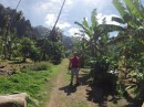 Walking through the village off Taioa Bay, towards the waterfall.  Village has this one dirt road.
