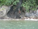 Near our boat, you can see the steam from the rocks, which had boiling hot water