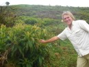 Galapagos endemic Miconia plant and forester Bill