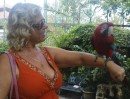 Linda and south american bird Sentosa