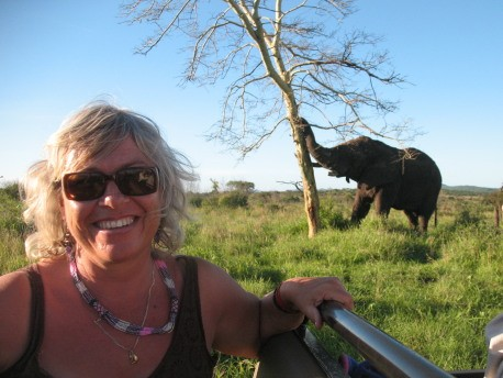 linda and elephantpushing down tree