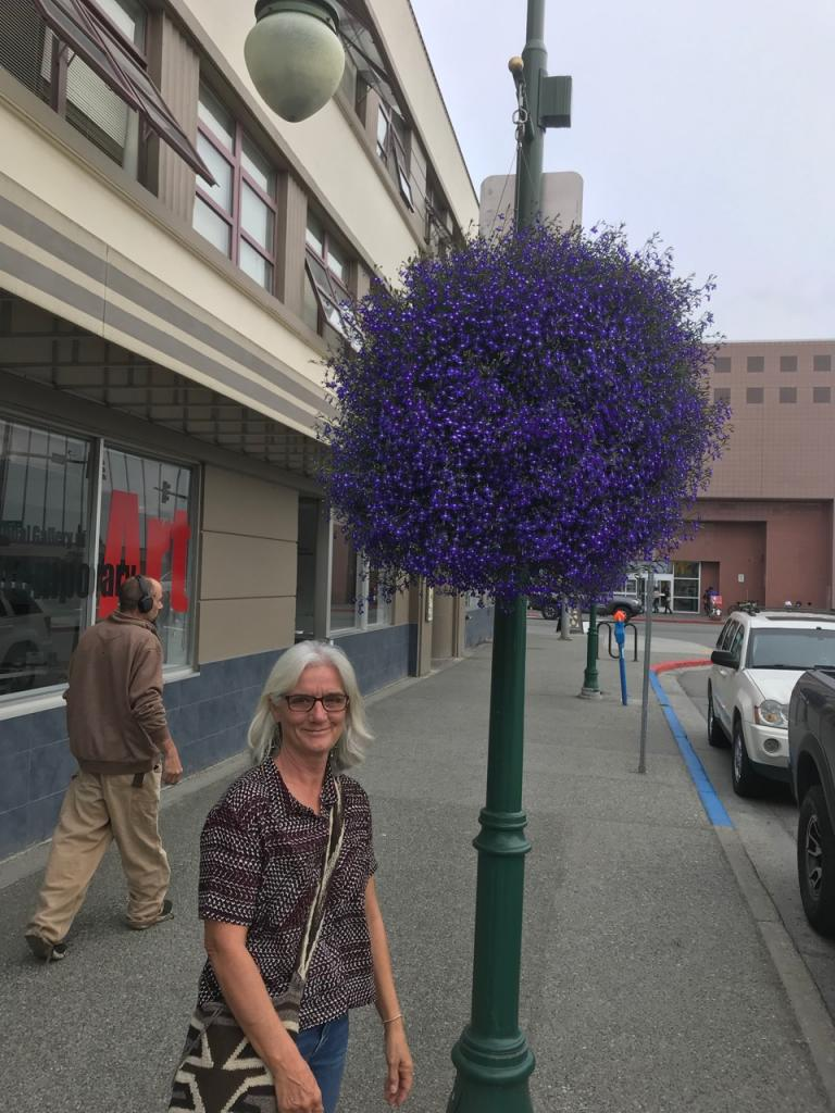 Anchorage has flower baskets along most streets downtown