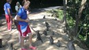 Feeding Monkeys at Lombok Monkey Forest