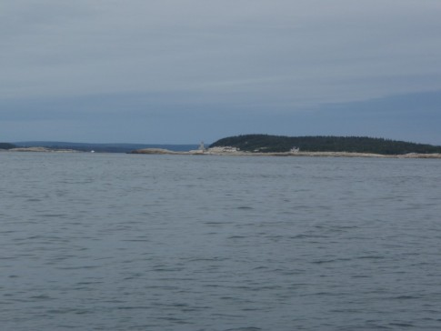 NS shore line on way to Liscomb Harbor