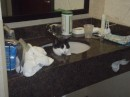 Spanker loves motel sinks