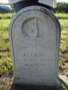 Marker for Great, great, grand father Tippin