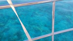 Lee Stocking: Anchor & chain on bottom in amazing clear water