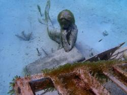 Rudder Cut Cay: Mermaid at the Piano